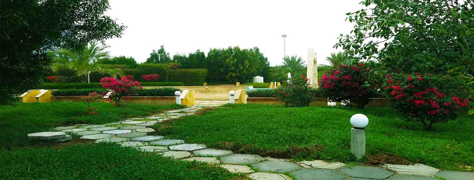 سبز پارک
