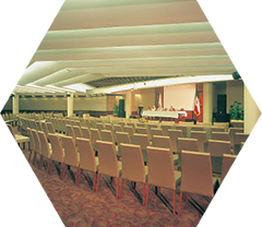 Meeting and conference halls